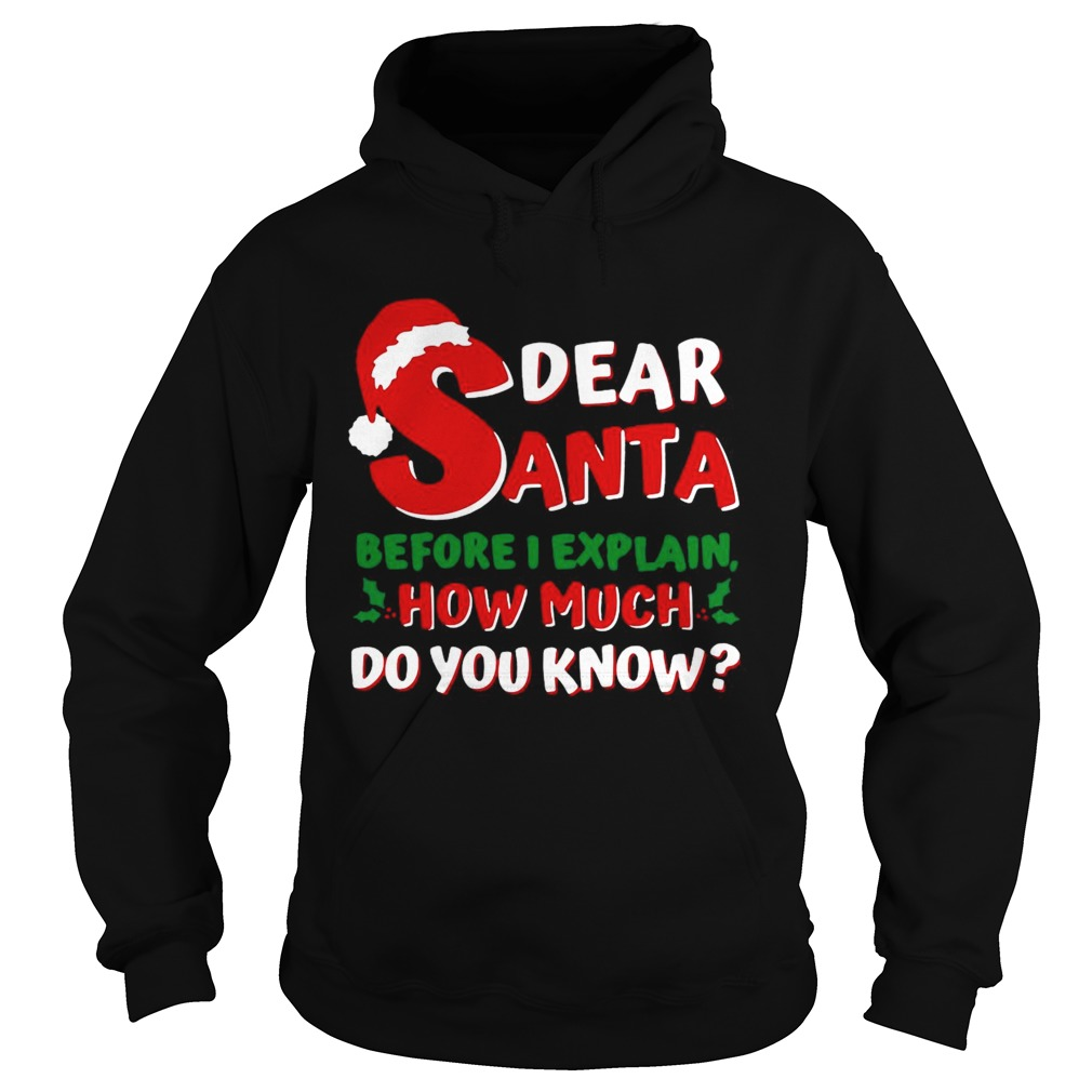 Dear Santa Before I Explain How Much Do You Know  Hoodie
